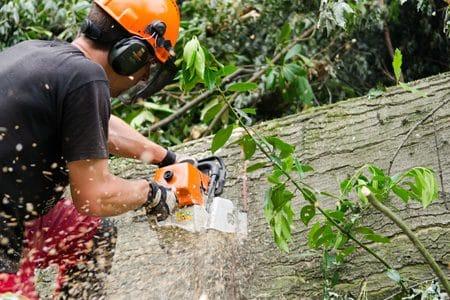 Entreprise pour les chantiers forestiers et paysagers, utilisateur de logiciels SOLUTIONS BTP